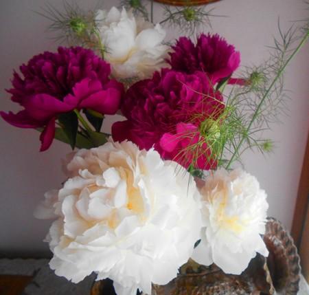 シャクヤク~花瓶に飾りました