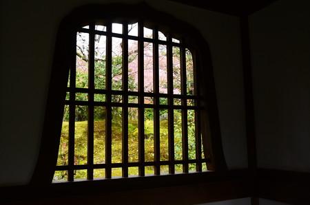 天龍寺桜風景