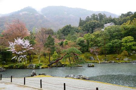 雨の曹源池
