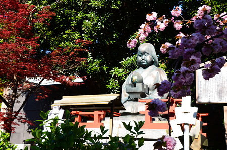 関山と赤もみじに飾られた阿亀像