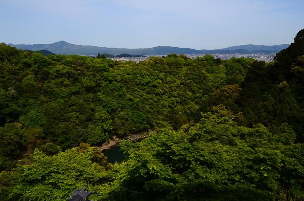 写真: 大悲閣からの眺望