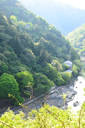 嵐山公園から見る大悲閣
