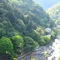 写真: 嵐山公園から見る大悲閣