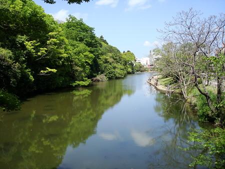 初夏の南郷公園