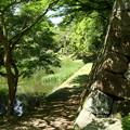 写真: 亀山城跡