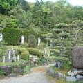 写真: 神応寺