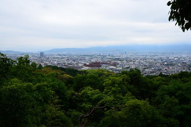 写真: 伏見稲荷大社からの眺め