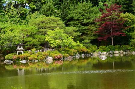初夏の栖凰池
