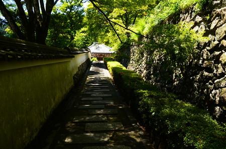 阿弥陀堂への道