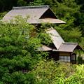 写真: 蘆菴から見る傍花閣