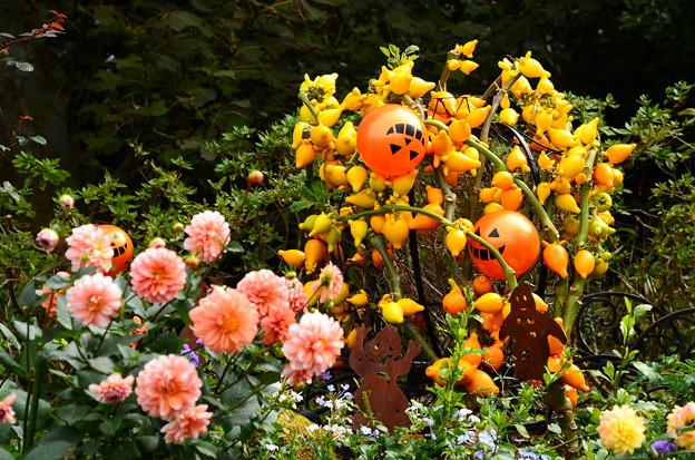 ガーデンミュージアム比叡のハロウィーン飾り
