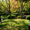 写真: 秋の影
