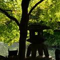 写真: 瓢箪池の石灯籠