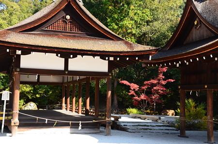 奈良の小川脇の紅葉