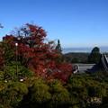 阿弥陀堂からの眺め