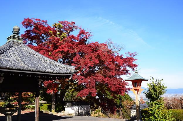 釈迦堂前の風景