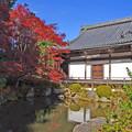 写真: 蓮華寿院旧跡庭