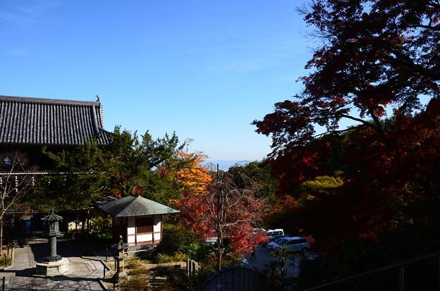 本堂前から山門を見下ろして