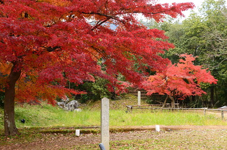 名古曽の滝跡の紅葉