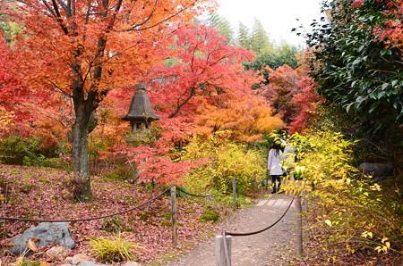 宝筐院の紅葉景色