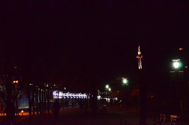 夜の京都タワーと水族館