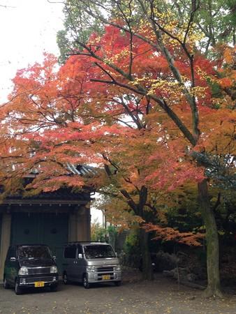 福壽稲荷前の紅葉
