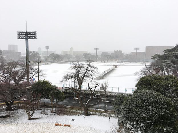 何十年かぶりの大雪