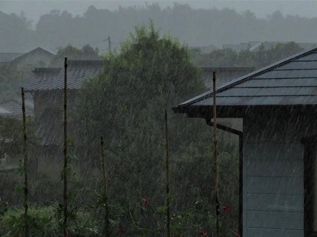 台風の豪雨_6885