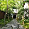 Photos: 蓮華寺