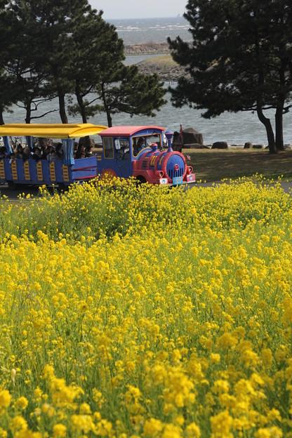 葛西臨海公園2