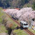 写真: 三江線 潮の春