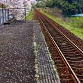 写真: とおい駅できっと誰かが待ってるね