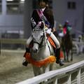 写真: 川崎競馬の誘導馬04月開催 川崎ジョッキーズC-120409-01-large