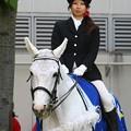 写真: 川崎競馬の誘導馬05月開催 こいのぼり青Ver-120514-03-large