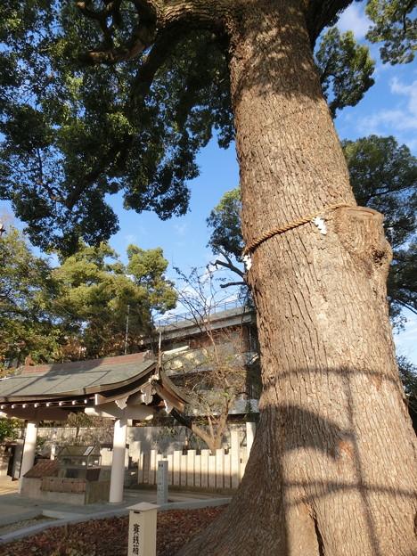 大阪市東住吉区にある神社