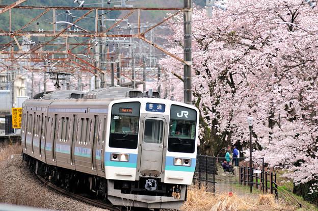 Photos: 211系 普通電車