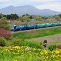 Photos: 八ヶ岳と石油輸送貨物列車