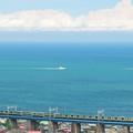 相模湾を見ながら鉄橋を渡る東海道線E231系普通電車