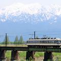 写真: 立山連峰と富山地鉄のローカル電車