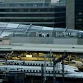 写真: 東京駅新幹線ホーム
