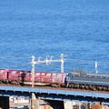 EF66形電機牽引のコンテナ貨物列車