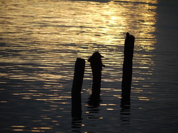 朝日差す湖面