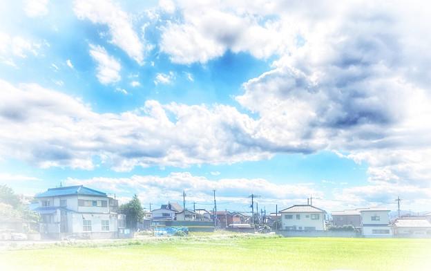 写真: 台風一過