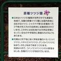 Photos: 原種つつじ園