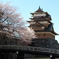冠木橋と高島城