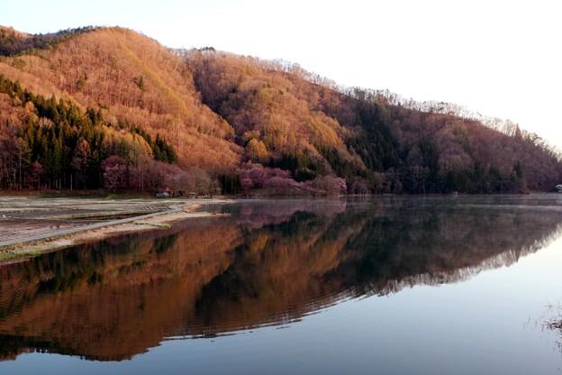 早朝の中綱湖水鏡