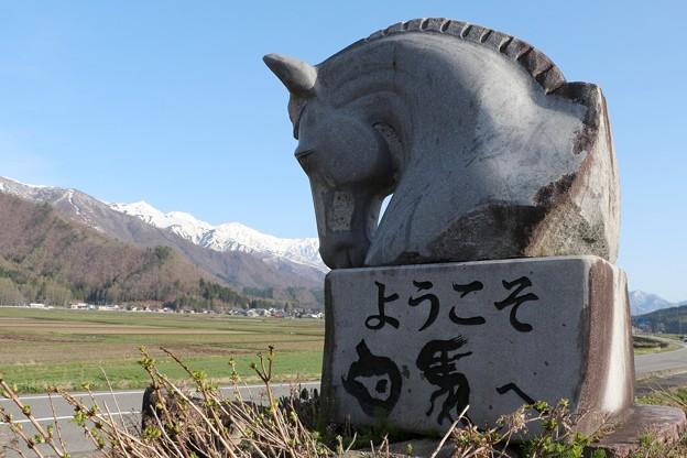 「白馬歓迎」石碑