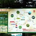 池の平湿原散策マップ