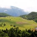 雲上の丘より池の平湿原を望む