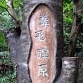 大木に彫られた「葦毛湿原」